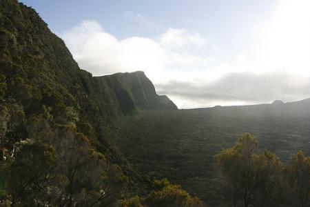 Ile de la Réunion - janvier 2011 - 246