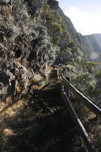 Ile de la Réunion - janvier 2011 - 247
