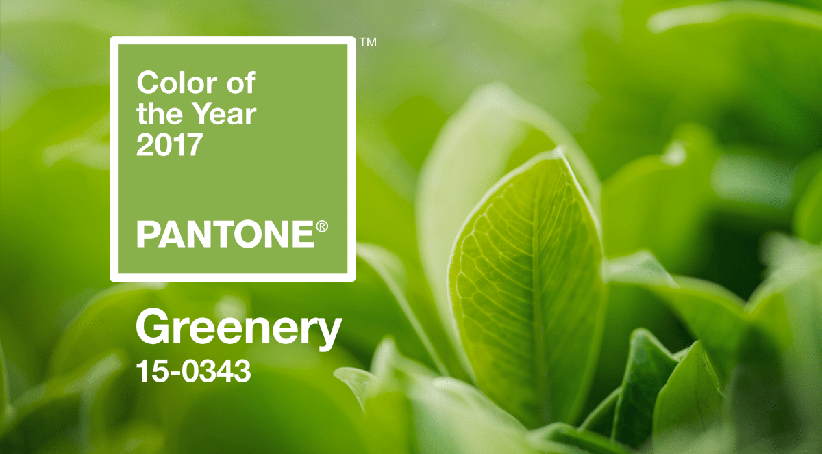 Greenery Pantone Greenery Announced Pantone S Color Of The Year 2017 Shop Lc