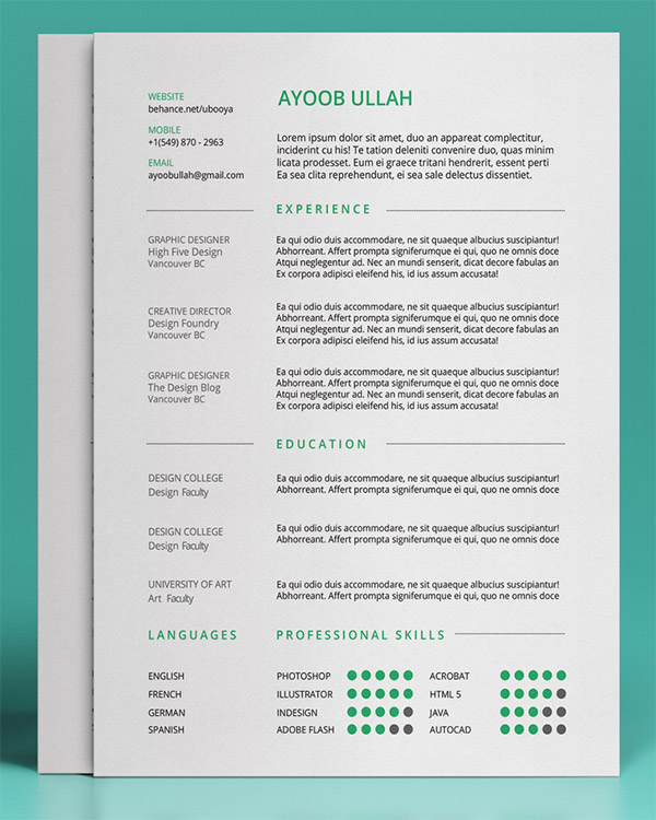 20 Free Editable CV/Resume Templates for PS  AI - standard font for resume
