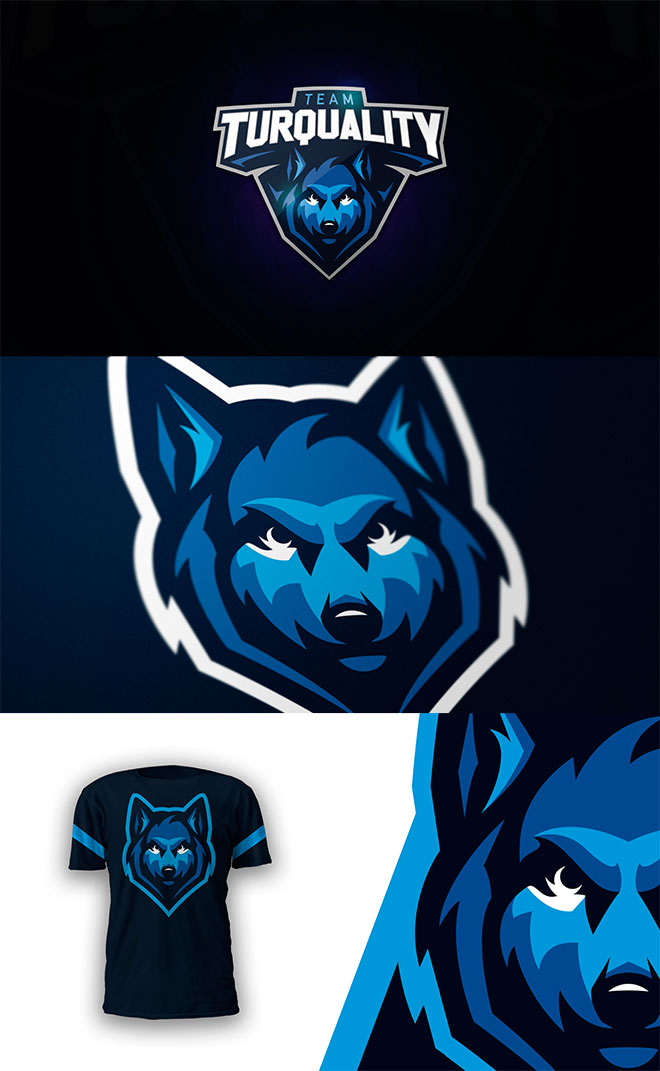 45 Mascot Logo Designs for Sports  eSports Teams