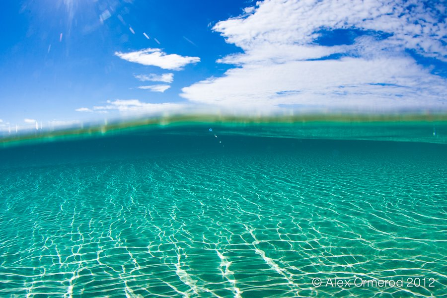 Underwater Iphone Wallpaper Mer