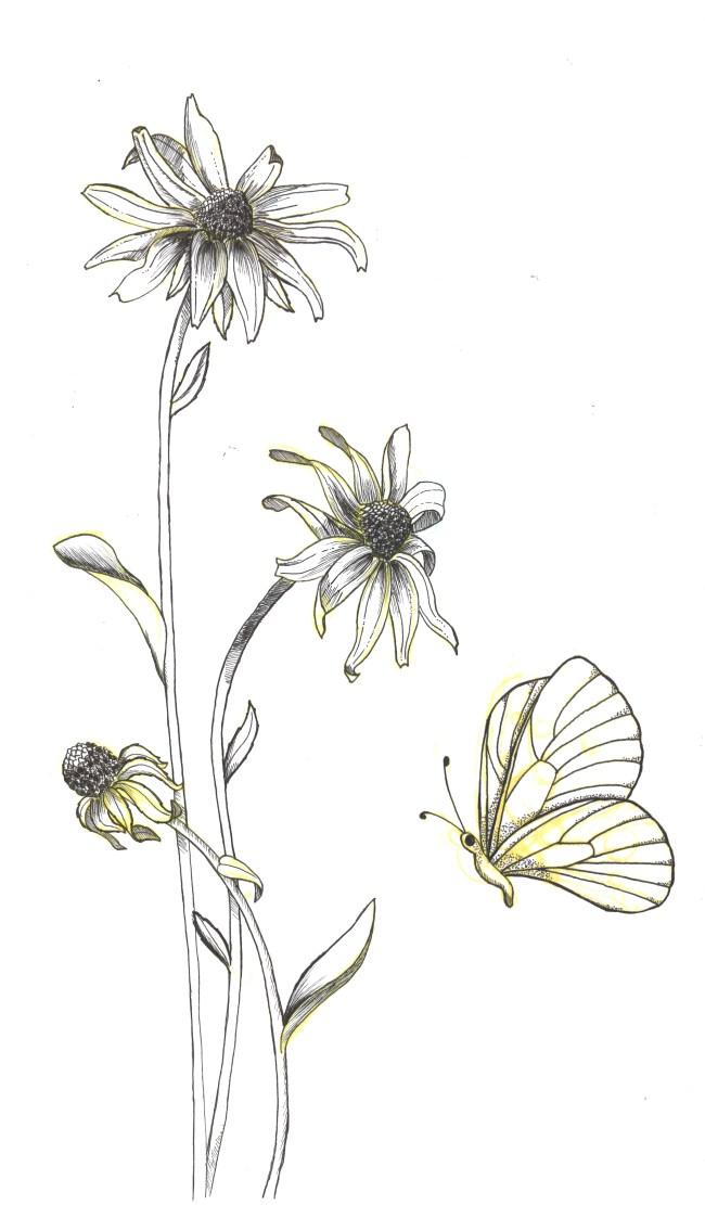 scientific florals