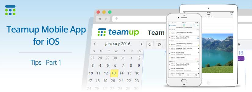 Getting Around Teamup App for iOS