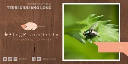 #BlogFlashDaily: Fly