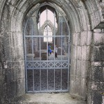 old carved door, Kilconnell Abbey, Co. Galway
