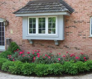How To Landscape Your Garden and Backyard Like A Professional
