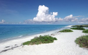 from: http://sanibel-captiva.org/