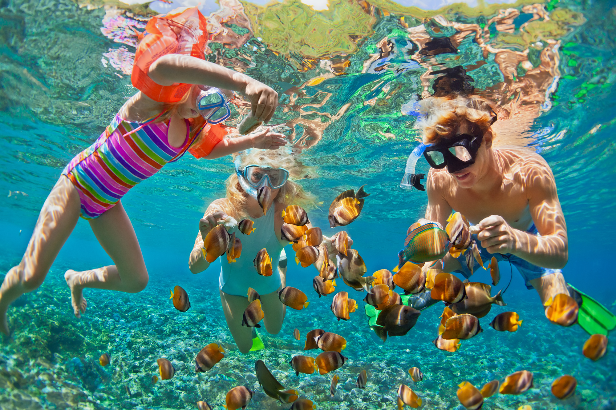 De Snorkels Spring Break Sun And Family Fun In The Florida Keys