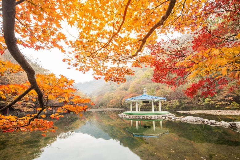 Early Fall Hd Wallpaper An Ultimate Guide To Autumn In Korea Fall Foliage