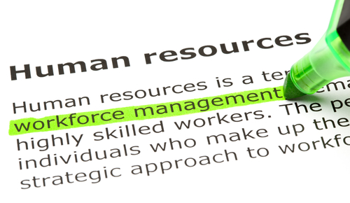 Human Resources Job Description A Fun and Exciting Career Opportunity - human resource job description