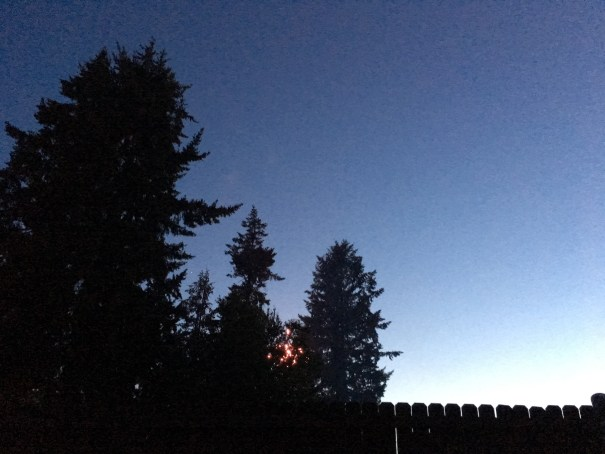 Fir trees are silhouetted behind a wooden fence as a tiny Jupiter is visible between them and a neighbor sets off a firework behind them.