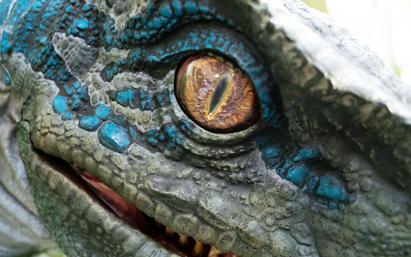 G Shock Hd Wallpaper Universal Orlando Close Up Experience Jurassic World