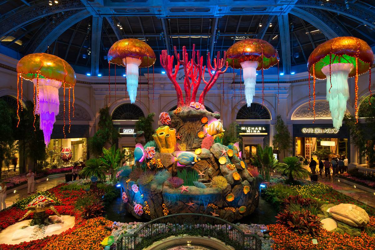 Fall Ceiling Wallpaper Design Bellagio Conservatory Brings Underwater Life To The Strip