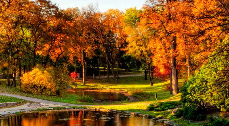 Late Fall Wallpaper Nature Quot Winnipeg Awaits Where To Be In October For Canada 150