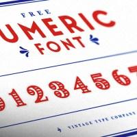 FREE Vintage Numeral Display Font
