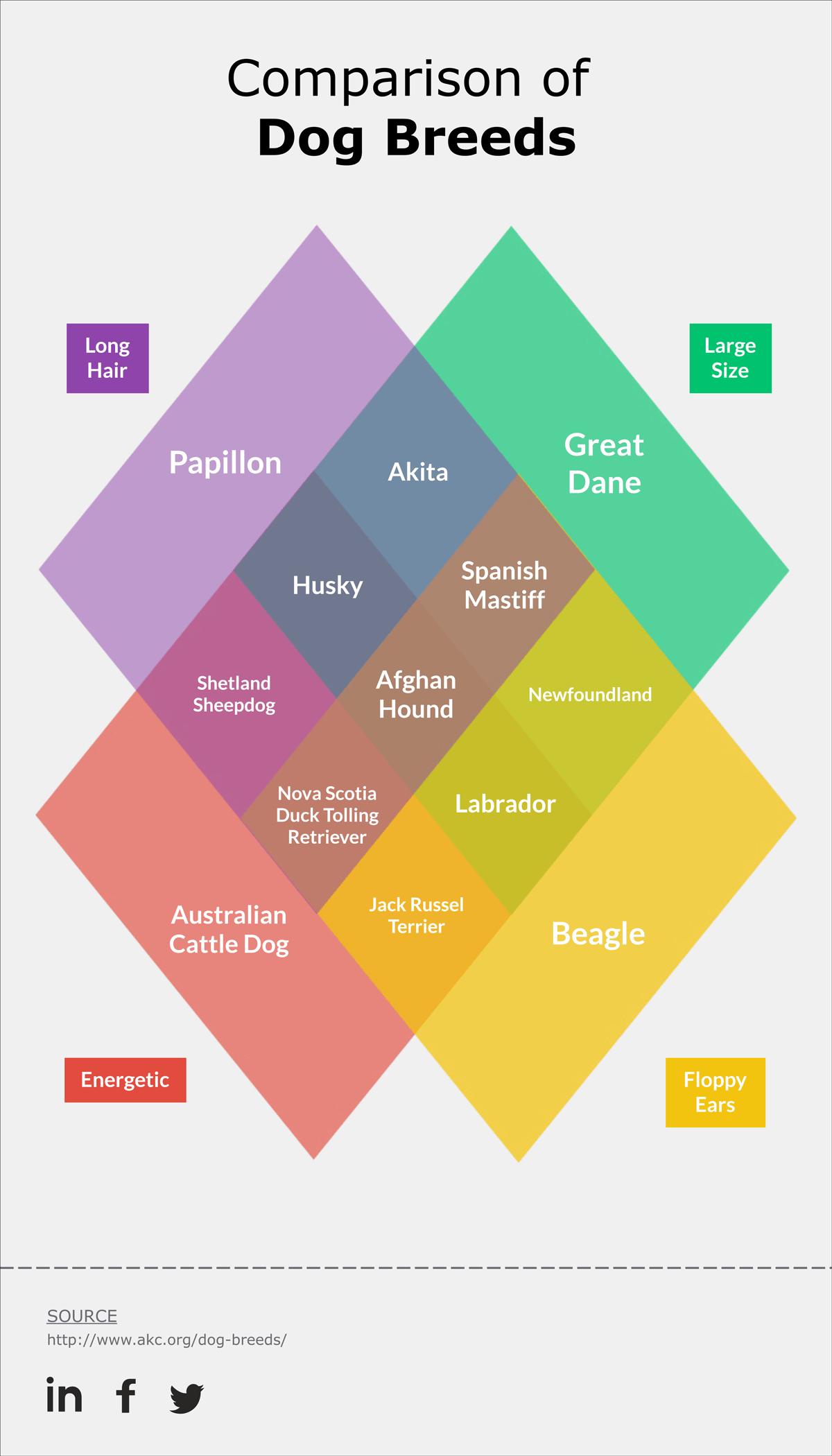 venn diagram uses
