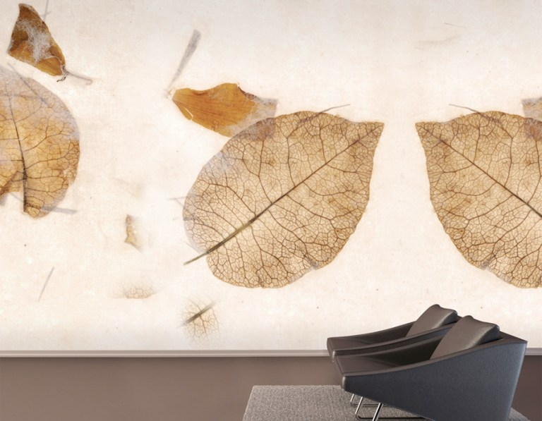 Leaf Veins Contemporary Wall Mural for Residential and Commercial Spaces M8959