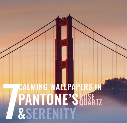 7 calming wallpapers in pantone's rose quartz and serenity