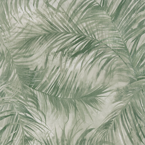 Green Fan Palm Wallpaper R2693