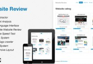 website-review-590x300