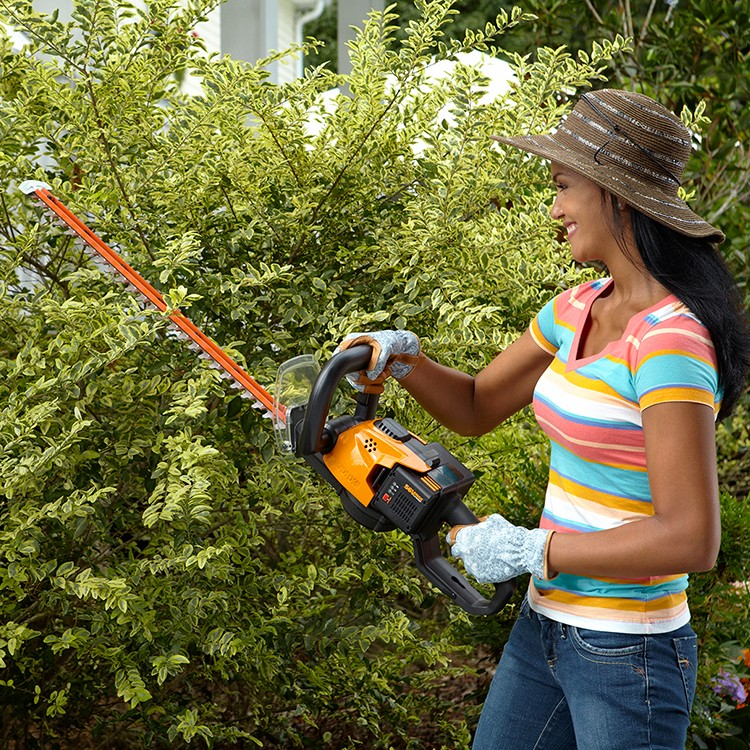 WORX 56V Hedge Trimmer