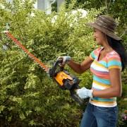 Hedge Trimming 101: How to Get Your Shrubs Spring-Ready