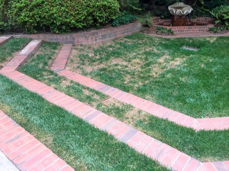 Grass shade decline