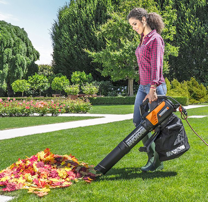 Remove Fallen Leaves With Turbine Fusion