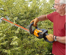 Trimming Hedges with Cordless Hedge Trimmer