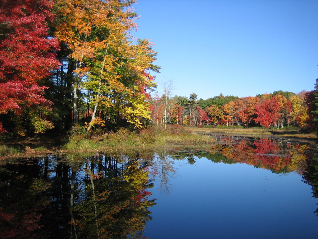New Hampshire Fall Foliage Wallpaper Zenlinux Blog 187 Blog Archive 187 Nh Fall Colors Bike Ride