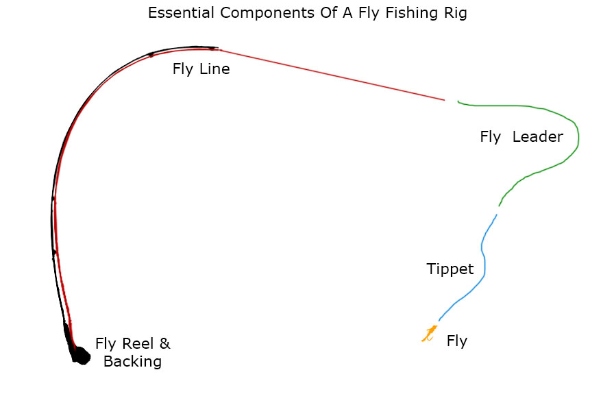 How to match a Fly Rod, Fly Reel, Fly Line, Leader, and Tippet - line leader