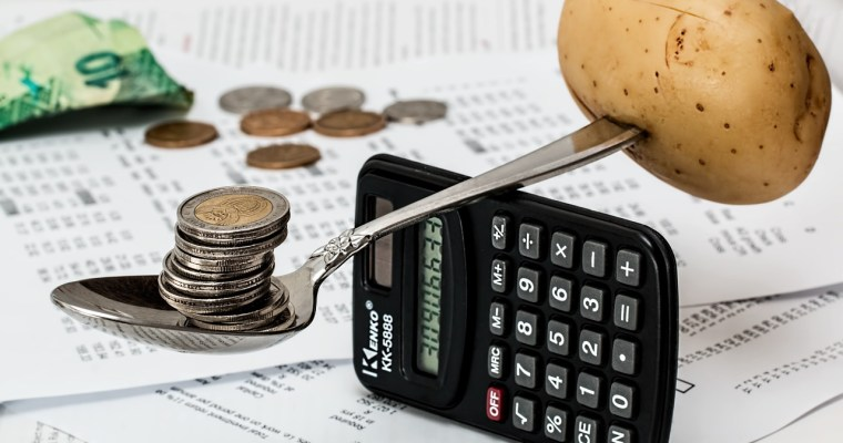 Savvy Steps To Setting a Family Budget