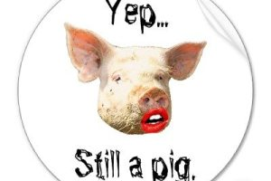 Quit Putting Lipstick on a Pig!
