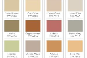 Helping Homeowners Choose Color