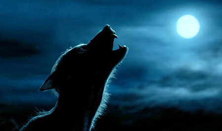 bloghogwarts-werewolf.jpg