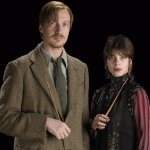 Remus Lupin y Nymphadora Tonks