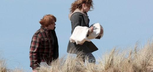 Hermione Granger y cadaver de Dobby
