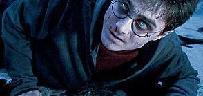 Harry Potter Profile
