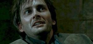 Harry Potter David Tennant