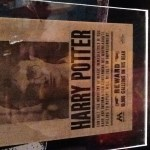Harry Potter BlogHogwarts Expo Mexico (34)