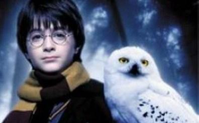 Harry Potter BlogHogwarts Lechuzas