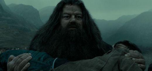 Harry-Potter-BlogHogwarts-Rubeus-Hagrid