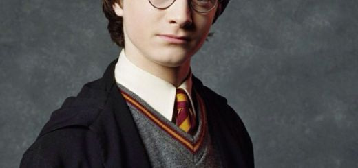 harry potter flores