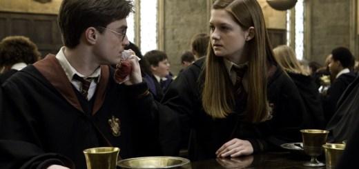 Harry Potter BlogHogwarts Harry Ginny