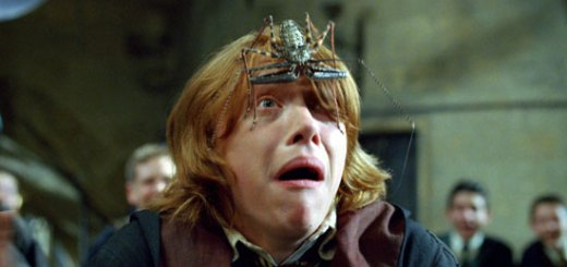Harry Potter BlogHogwarts Araña Caliz Fuego