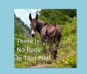 there-is-no-pony-in-the-pile-millennials