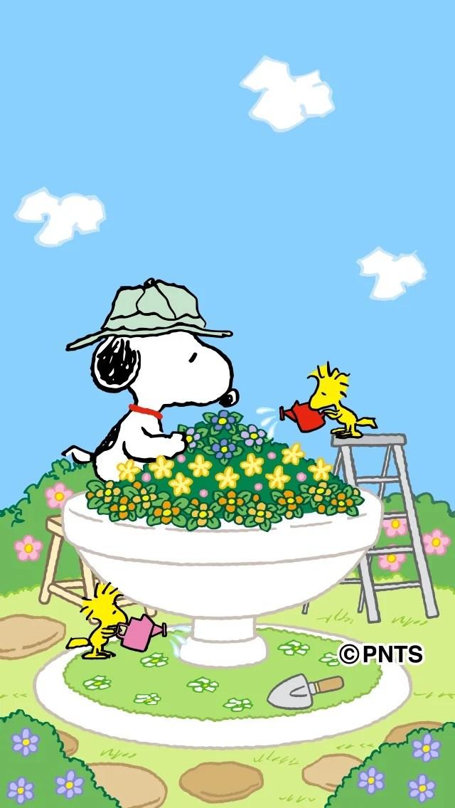 Snoopy Wallpaper Iphone 6 スヌーピーの壁紙2015夏 のんびり~? Marilyn、ししまる号との日々?!♪