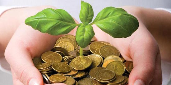 Bisnis investasi forex terpercaya