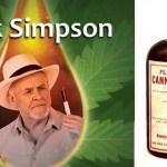 Rick Simpson szerint alternatív kemo, a füvészet szerint, minden bajra enyhülést adó gyógyír. Tudtad, hogy ez a kender? (+VIDEO)